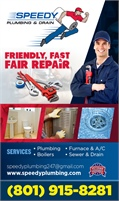 Speedy Plumbing and Drain LLC