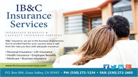 IB & C Insurance Services